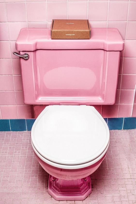 Toilet and Prolapse